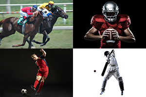 shows sports betting startup